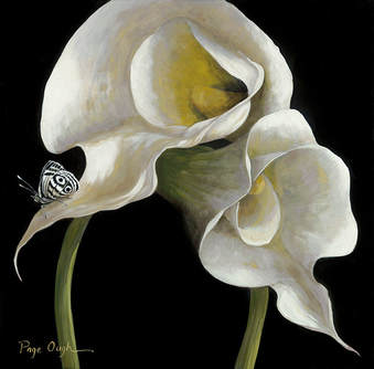 Page Ough, The Dance Calla Lilies, 18